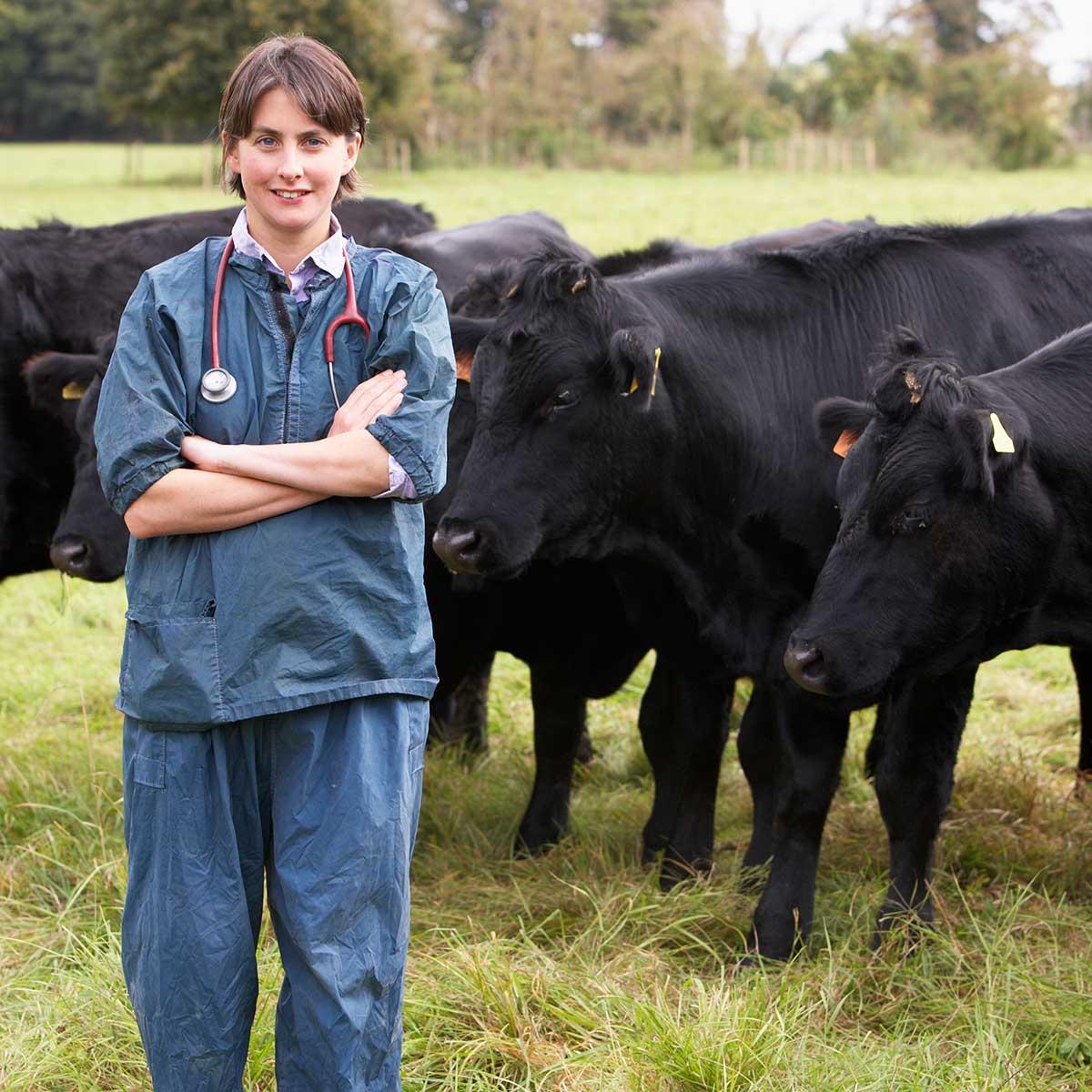 Farm Animals - Jack Lungmus Risk Management Specialist for ...